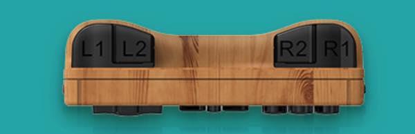 Botones traseros rg351v